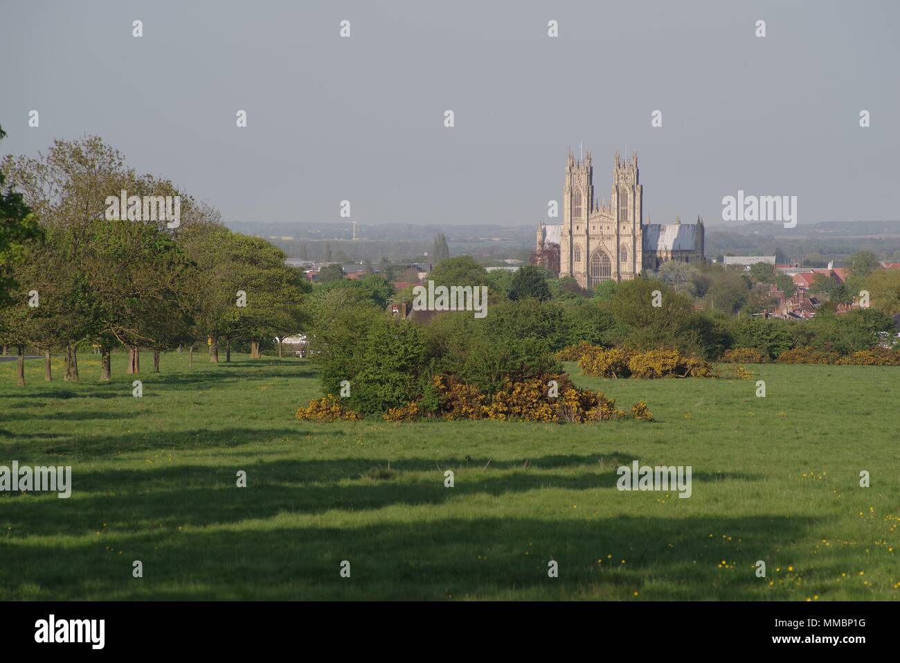 Beverley with Beverley Minster from Beverley Westwood, East Yorkshire, UK, England, Angleterre - Stock Image