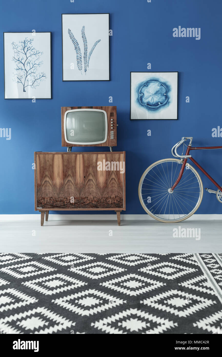 Black and white patterned carpet in blue and wooden living room Stock Photo