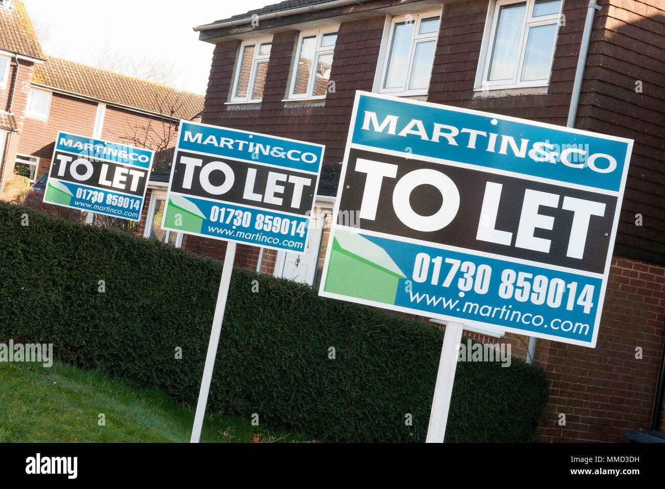 To Let signs in suburban street - Stock Image