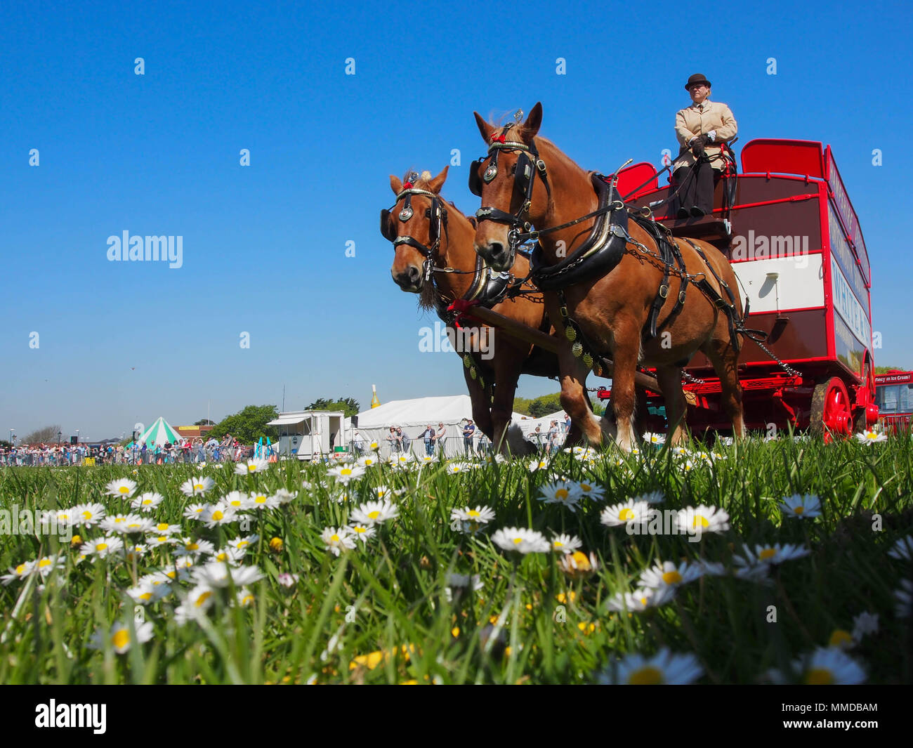 A horse drawn crriage displays at the Rural and Seaside show in Southsea, Portsmouth, England. - Stock Image