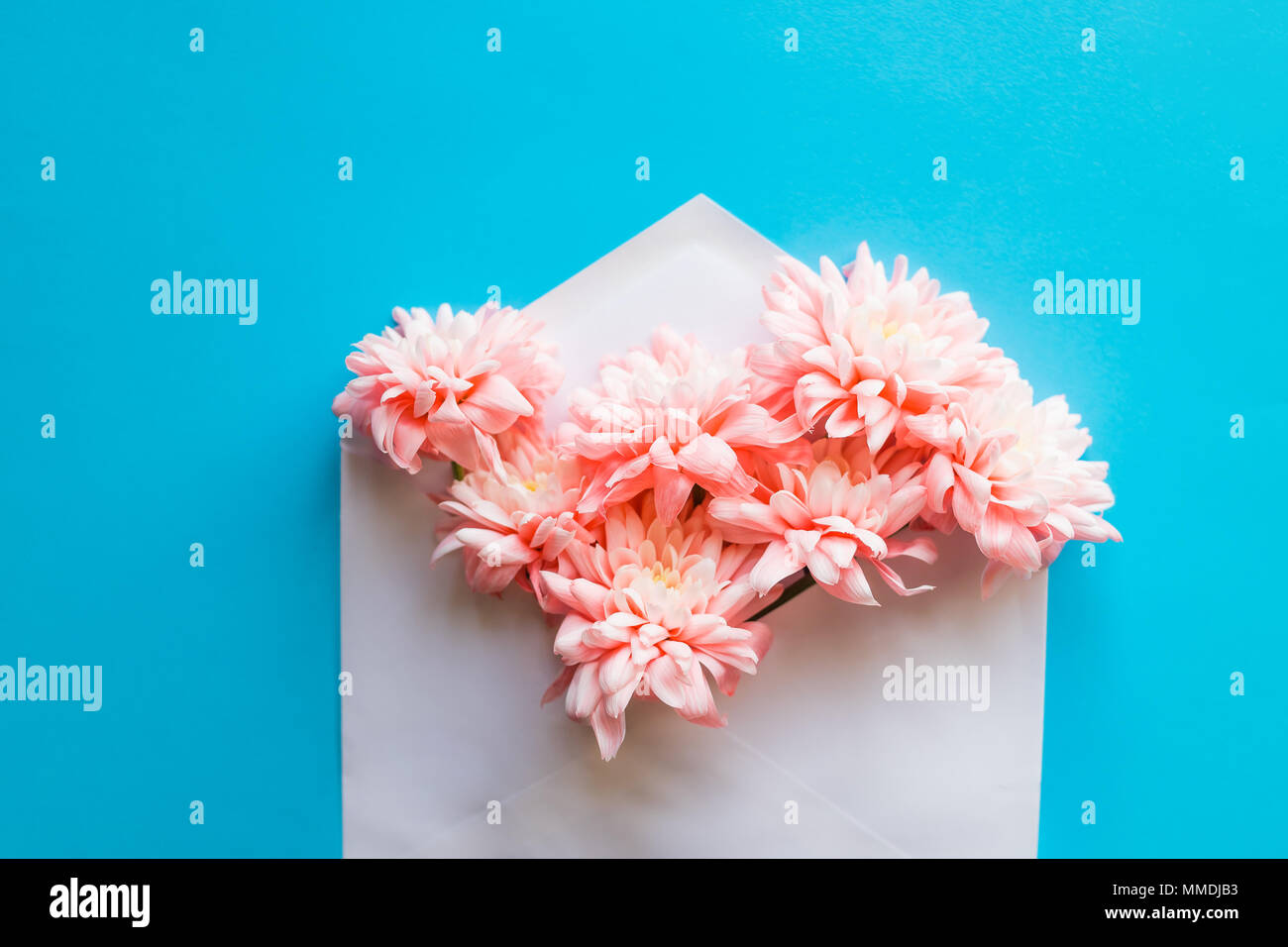 Fresh Beautiful Flowers Bunch In Envelope On Pastel Blue Background
