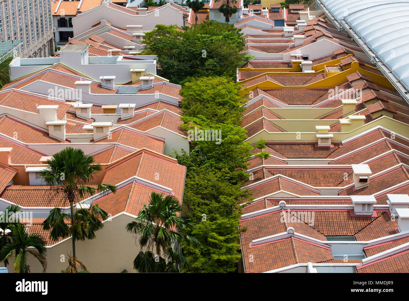 Aerial view to see how trees are planted in-between the shophouses - Stock Image