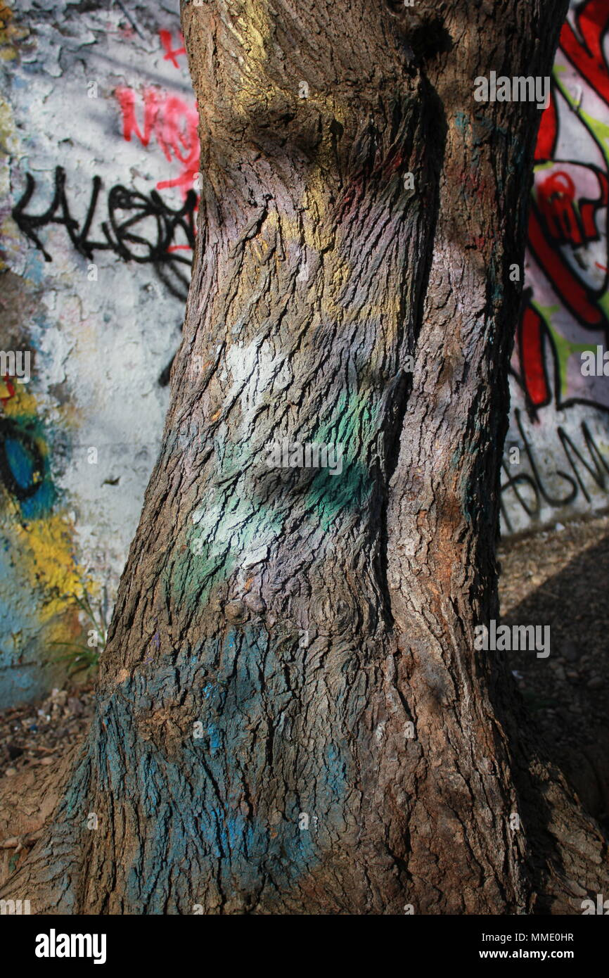 Graffiti spray-painted on a tree at The Graffiti Bridge at La Bragh woods in an inner city area of Chicago, Illinois. - Stock Image