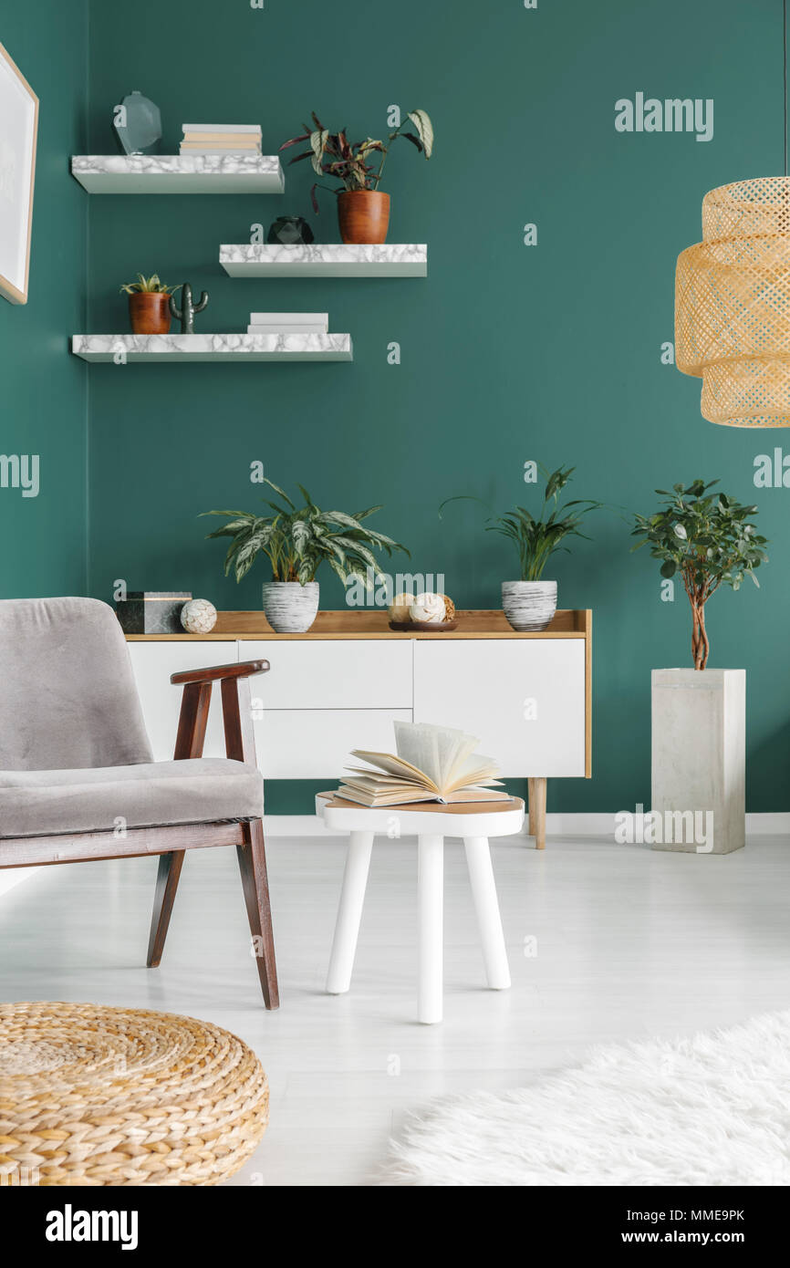 Open book placed on a wooden end table in green living room interior with fresh plants and marble shelves - Stock Image