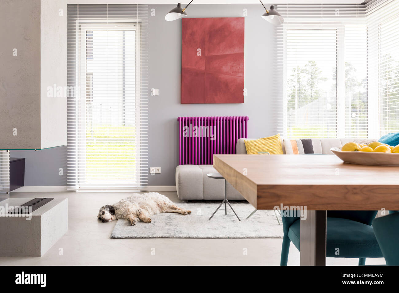 Light Beige Couch, Table, Fireplace, Artwork, Bright Windows And Purple  Accent In Contemporary Living Room With Dog Sleeping On The Rug