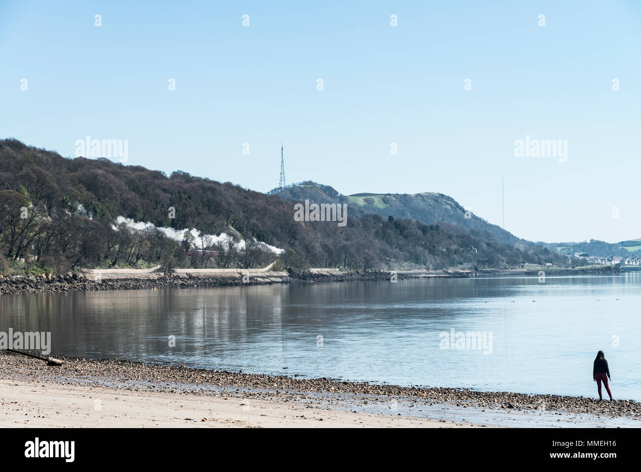 A steam train runs along Silversands Bay, watched by a lone person on the shoreline - Stock Image