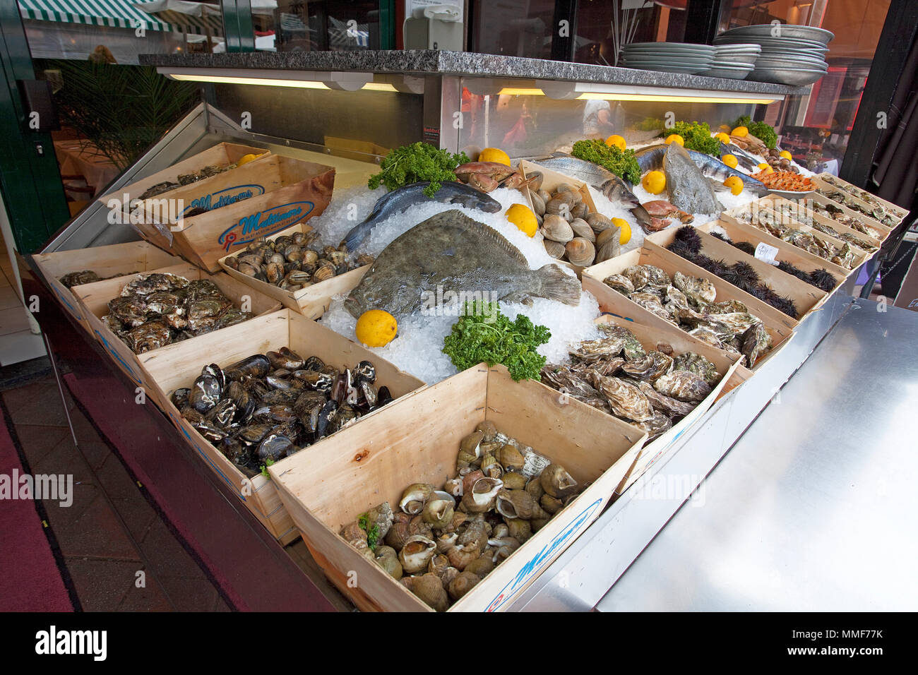 Seafood selection at a restaurant, place Cours Saleya, Nice, Côte d'Azur, Alpes-Maritimes, South France, France, Europe - Stock Image