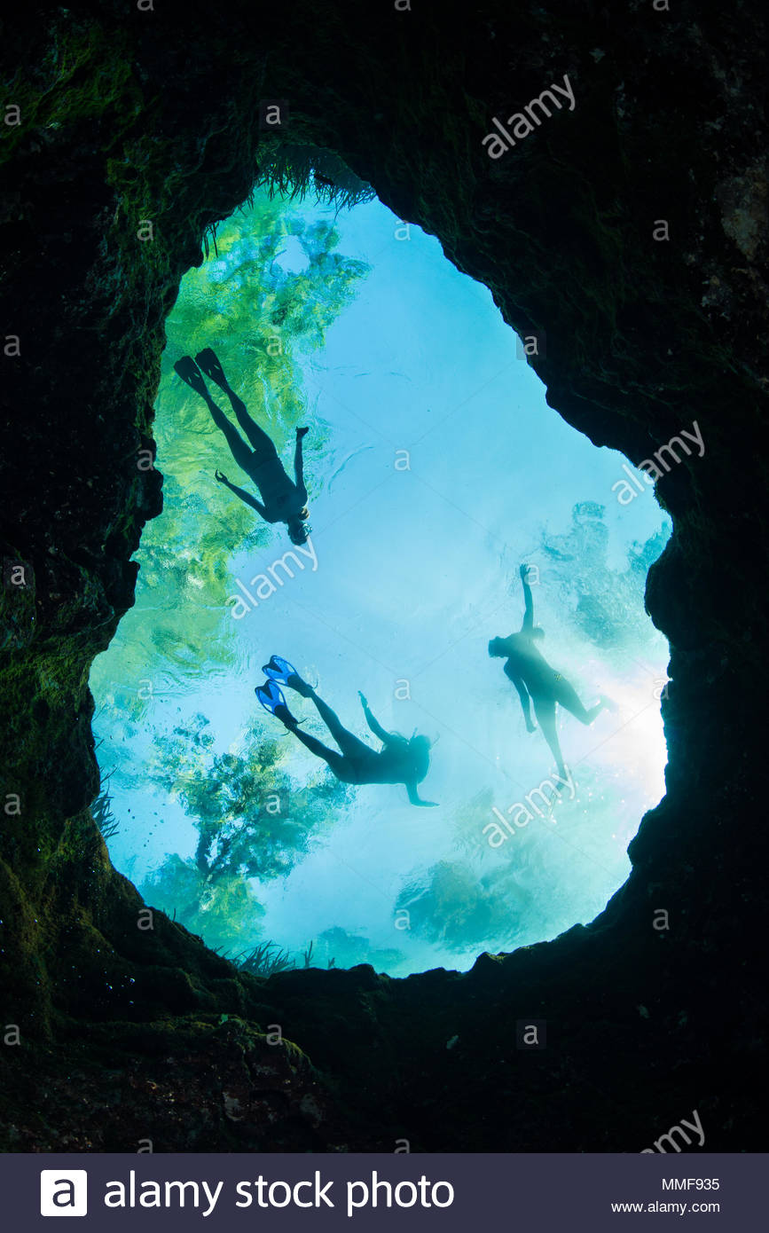 Silhouetted swimmers as seen from the bottom of Jug Hole on the Ichetucknee River. - Stock Image