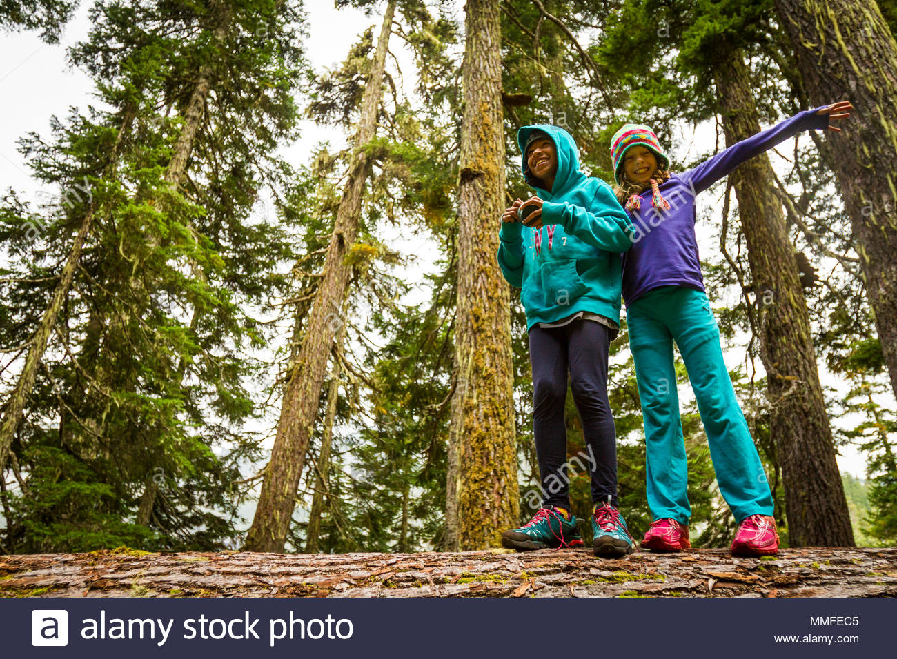 Two young girls enjoy walking along a fallen log in the forest. Stock Photo
