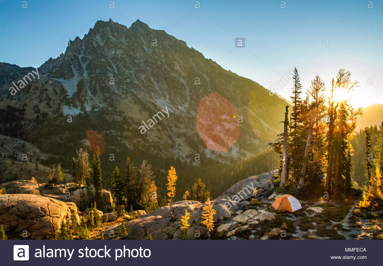Sun rises over a campsite nestled in fall colored larches. - Stock Image