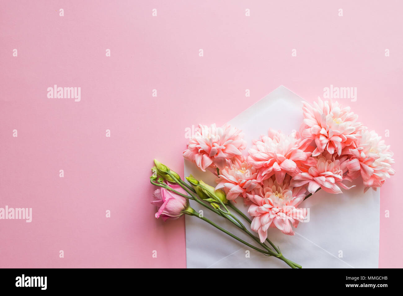 Bunch Of Pink Chrysanthemums In An Envelope Message For You Happy
