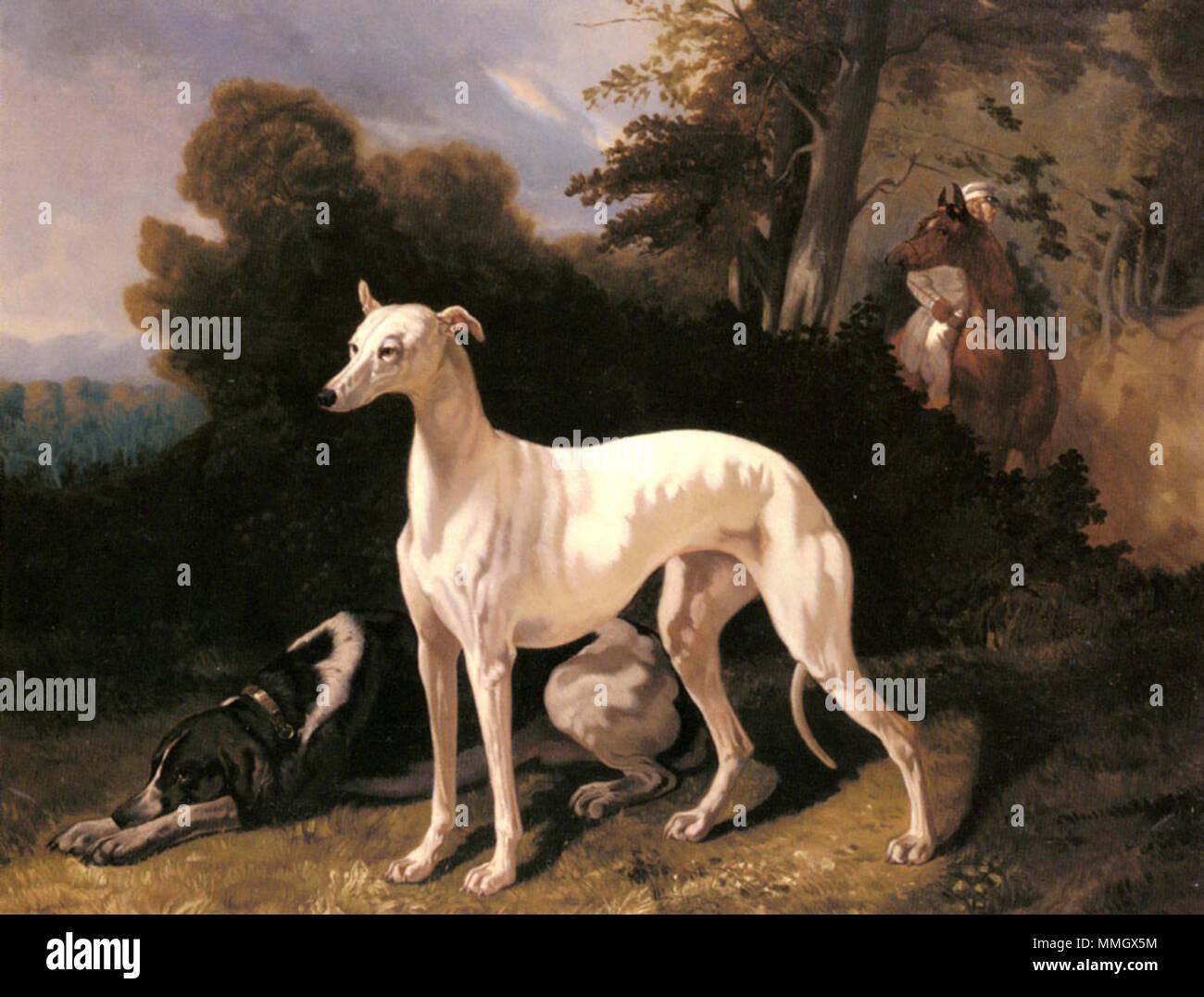 English: A Greyhound In An Extensive Landscape Français : Barboza ...