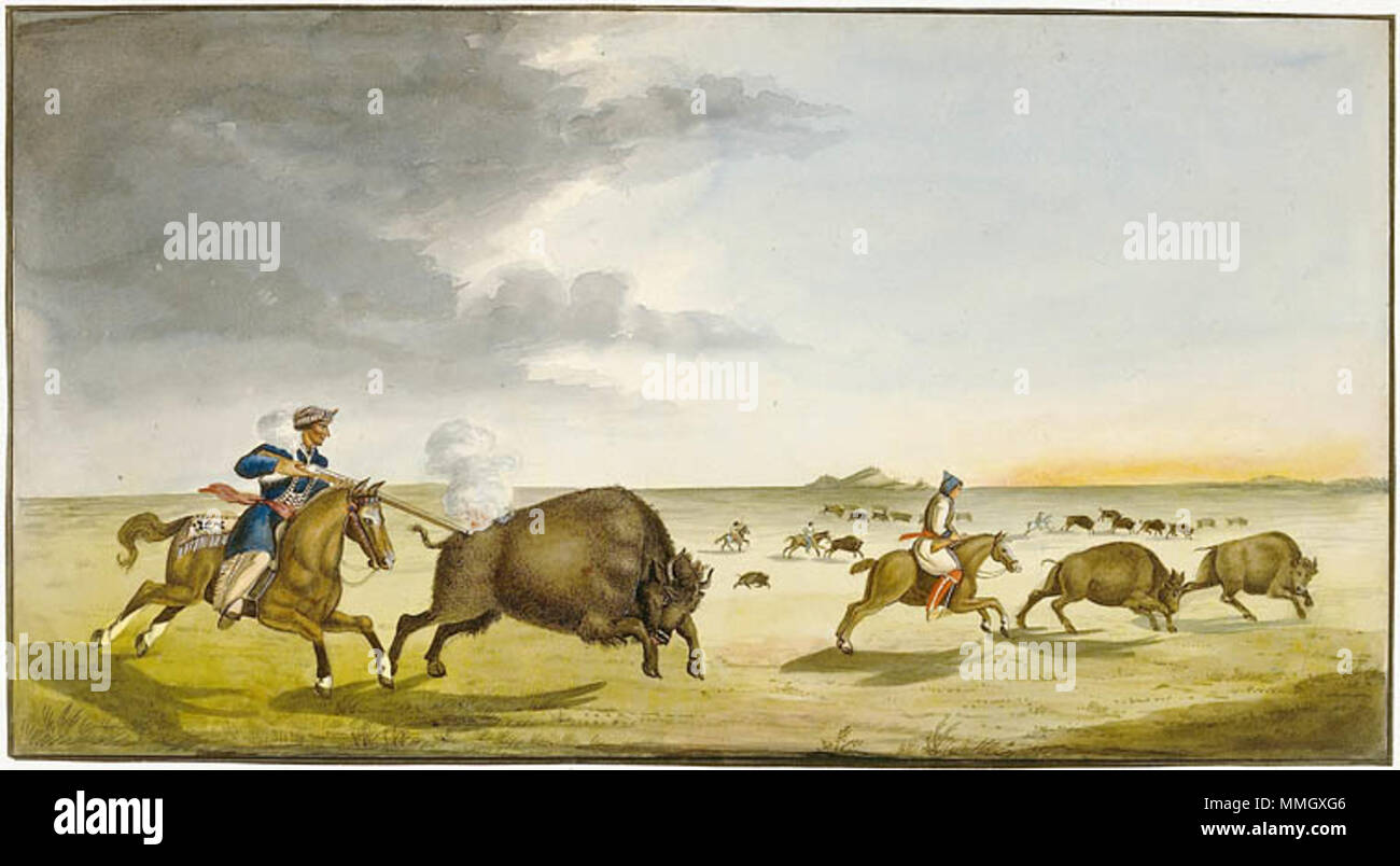 . English: Metis hunting buffalo in the Summer 1822 by Peter Rindisbacher, (1806-1834). Français : Chasse au bison par les Metis durant l'été 1822 par Peter Rindisbacher (1806-1834).  . 1822. Rindisbacher, Peter, 1806-1834. Buffalo Hunting in the Summer 1822 - Stock Image