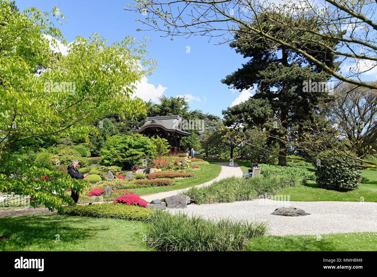 The Japanese Garden in the Royal Botanic Gardens, Kew Greater London England UK - Stock Image