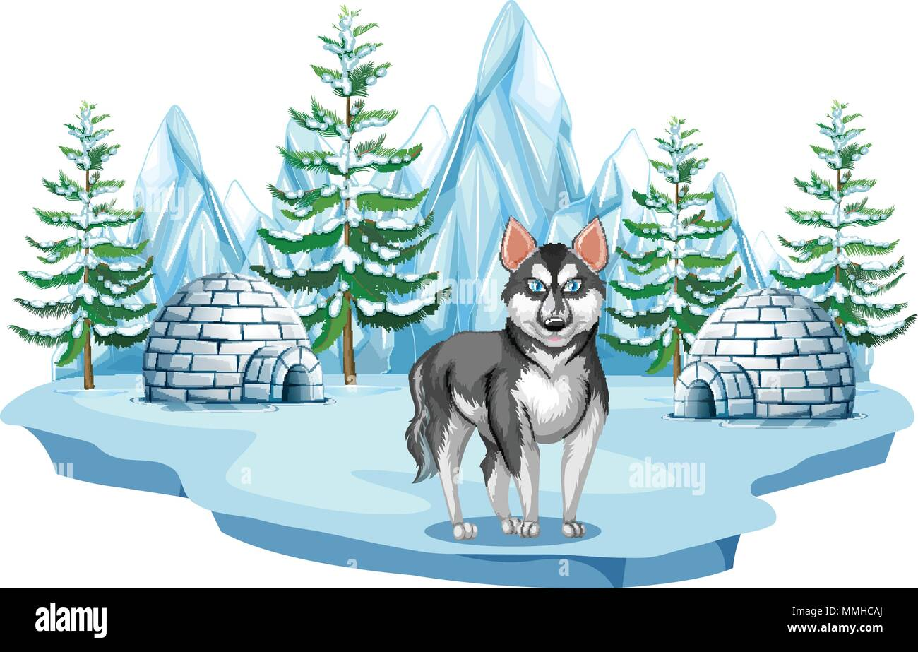 Siberian Husky Dog in Arctic illustration - Stock Vector