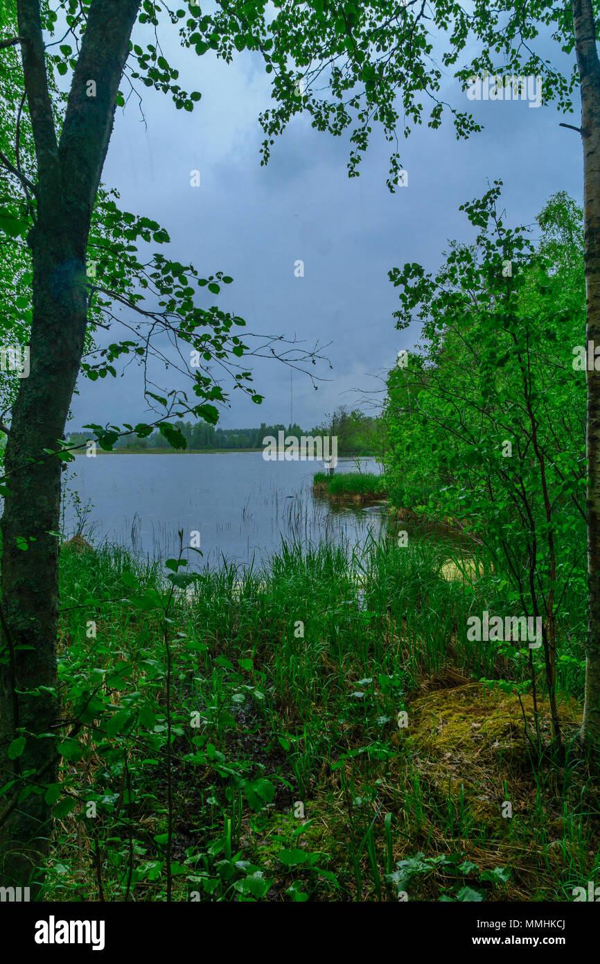 Landscape of lake Kuonanjarvi, Shouthern Savonia, Lakeland region, Finland - Stock Image