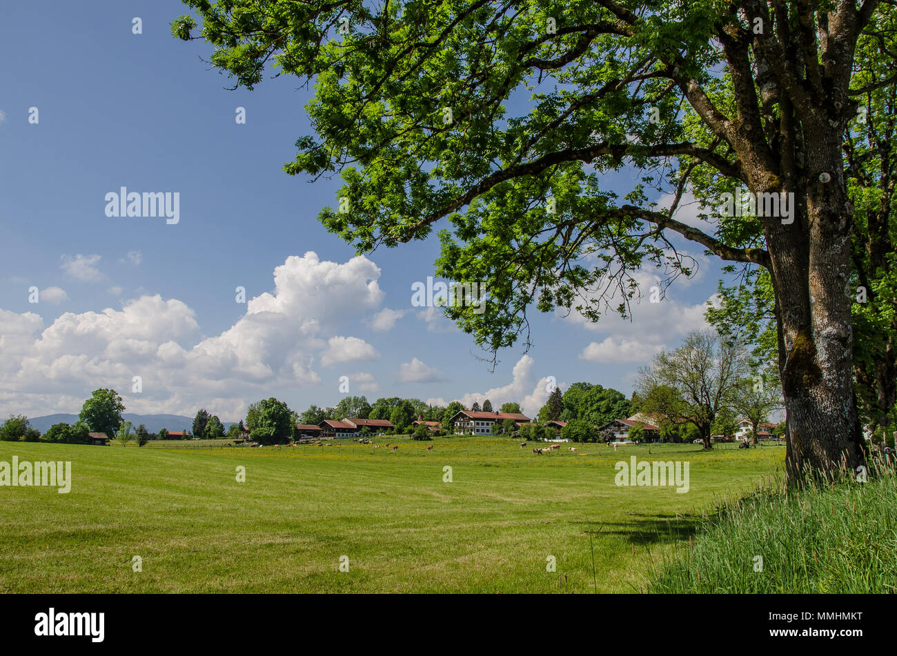 Reitham, a beautiful Bavarian village - Stock Image