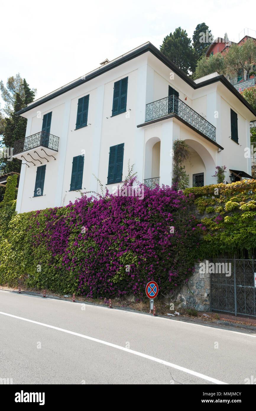 Luxury Homes Along The Italian Coast At Portofino, Italy.