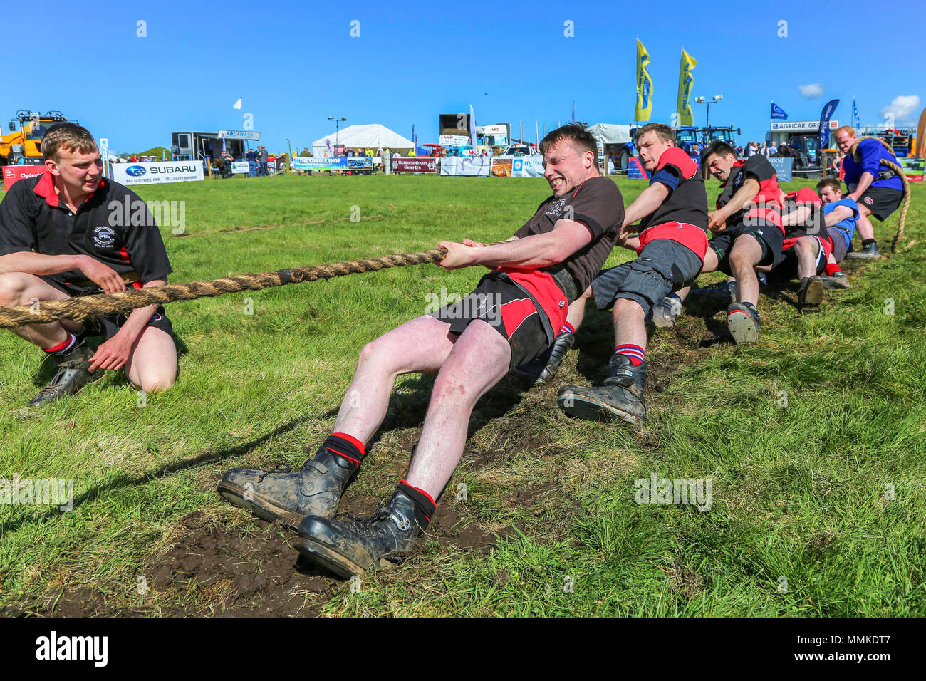 Ayrshire, UK. 12th May 2018. On a hot and sunny May day, the annual Ayr County Show held at Ayr Race course attracted hundreds of entrants to the farming competitions and also thousands of spectators. As well as the usual competitions for cattle, sheep and poultry, there were prizes for the winners of the male and female 'Young Farmers Tug of War' competition and for the best decorated lorry Credit: Findlay/Alamy Live News - Stock Image