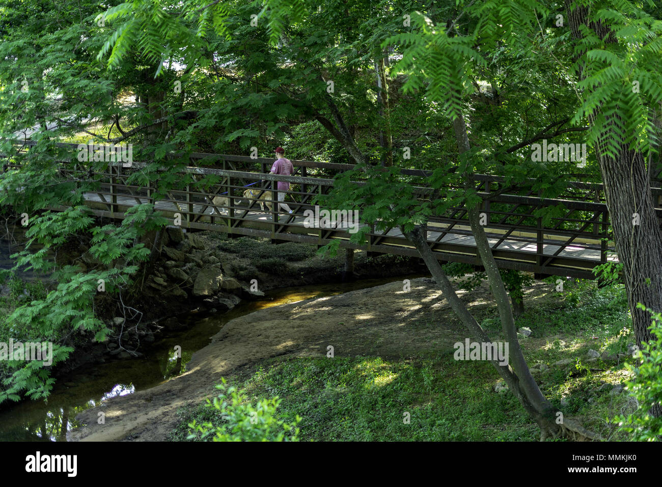 Tuscaloosa, Alabama, USA. 12th May, 2018. This man was taking his dogs for a walk along the Warrior River in Tuscaloosa, Alabama on Saturday, May 12th 2018. It was another beautiful morning with an expected high in the low 90's. Credit: Credit: /ZUMA Wire/Alamy Live News - Stock Image
