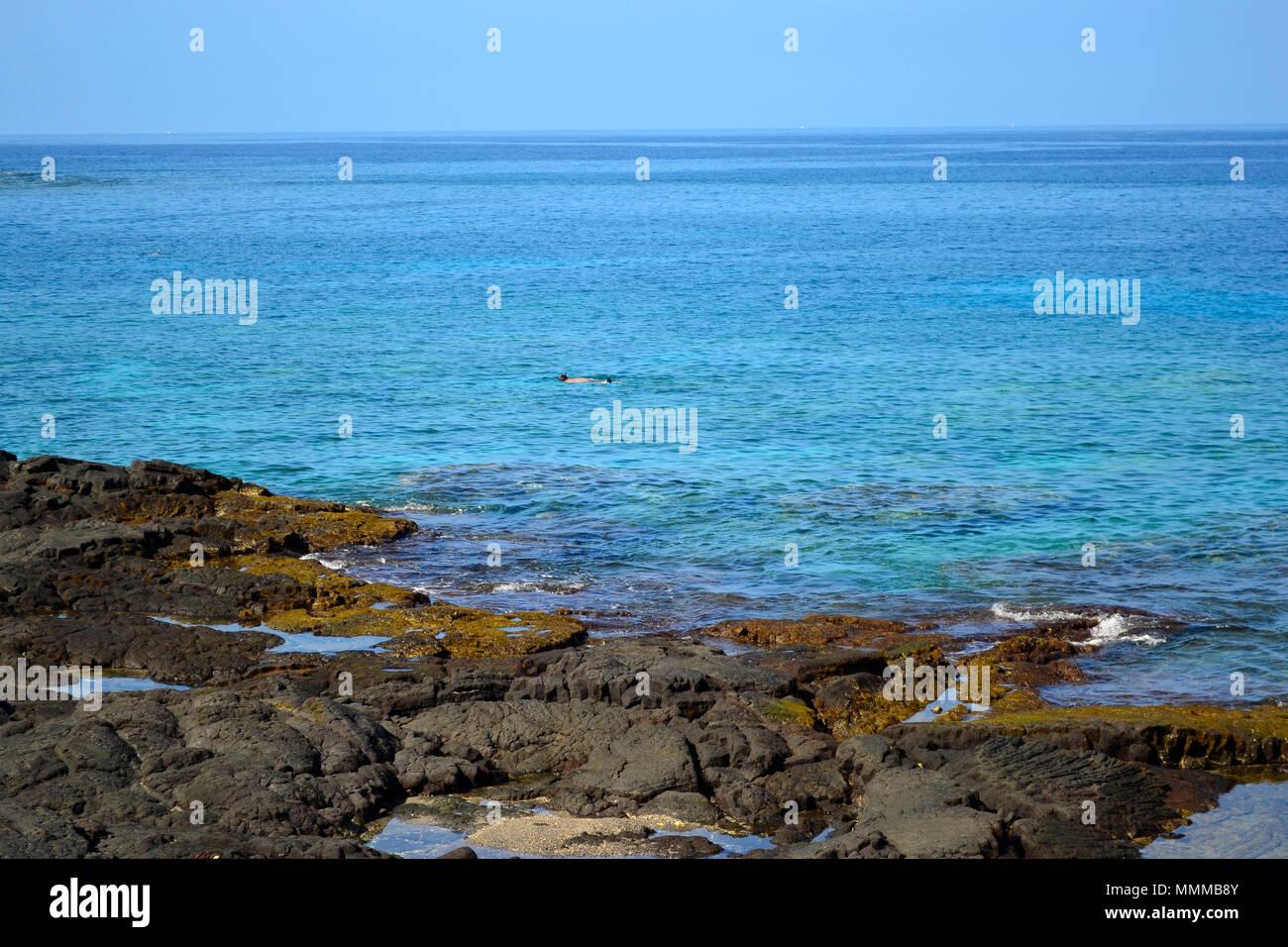 Snorkeler in a flat Honaunau Bay, Big Island, Hawaii, USA - Stock Image
