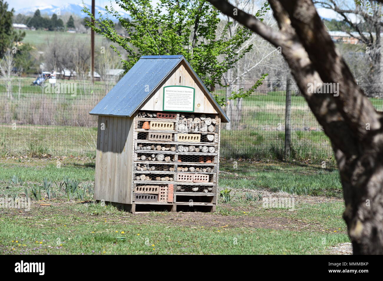 Beneficial Insect House at Hudson Gardens - Stock Image