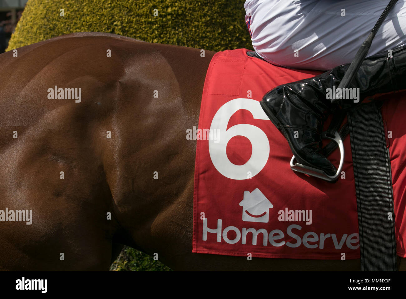 Homeserve Huxley Stakes (Group 2) War Decree ridden by R L Moore - Stock Image