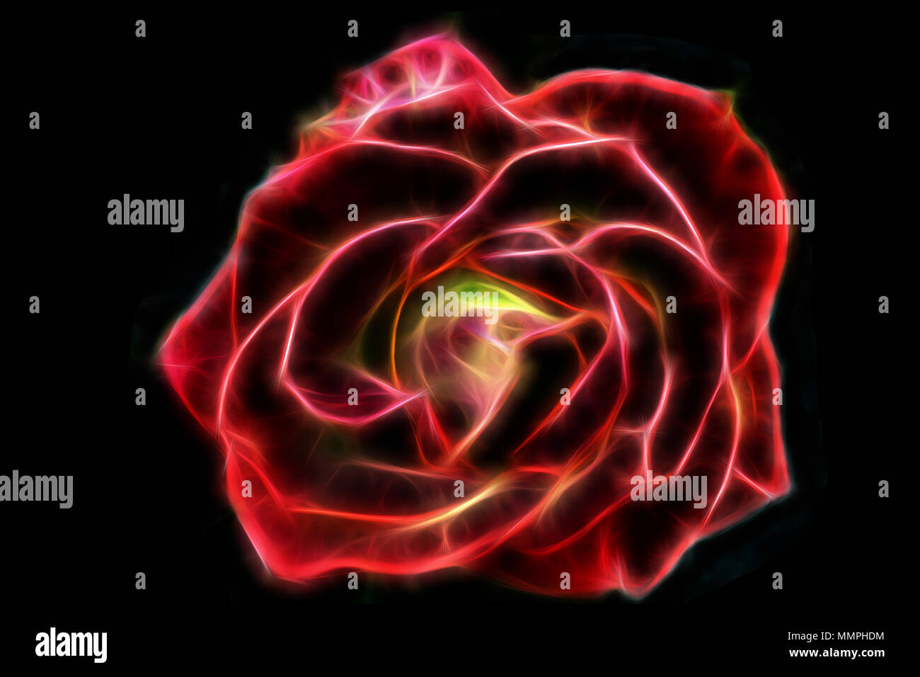 Abstract glow wire red rose on a black background Stock Photo ...