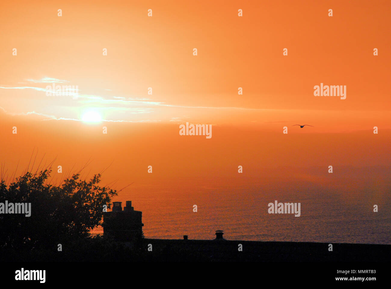 Portland. 12th May 2018.The warm colours of the setting sun over Lyme Bay at dusk, seen from a Portland garden - Stock Image