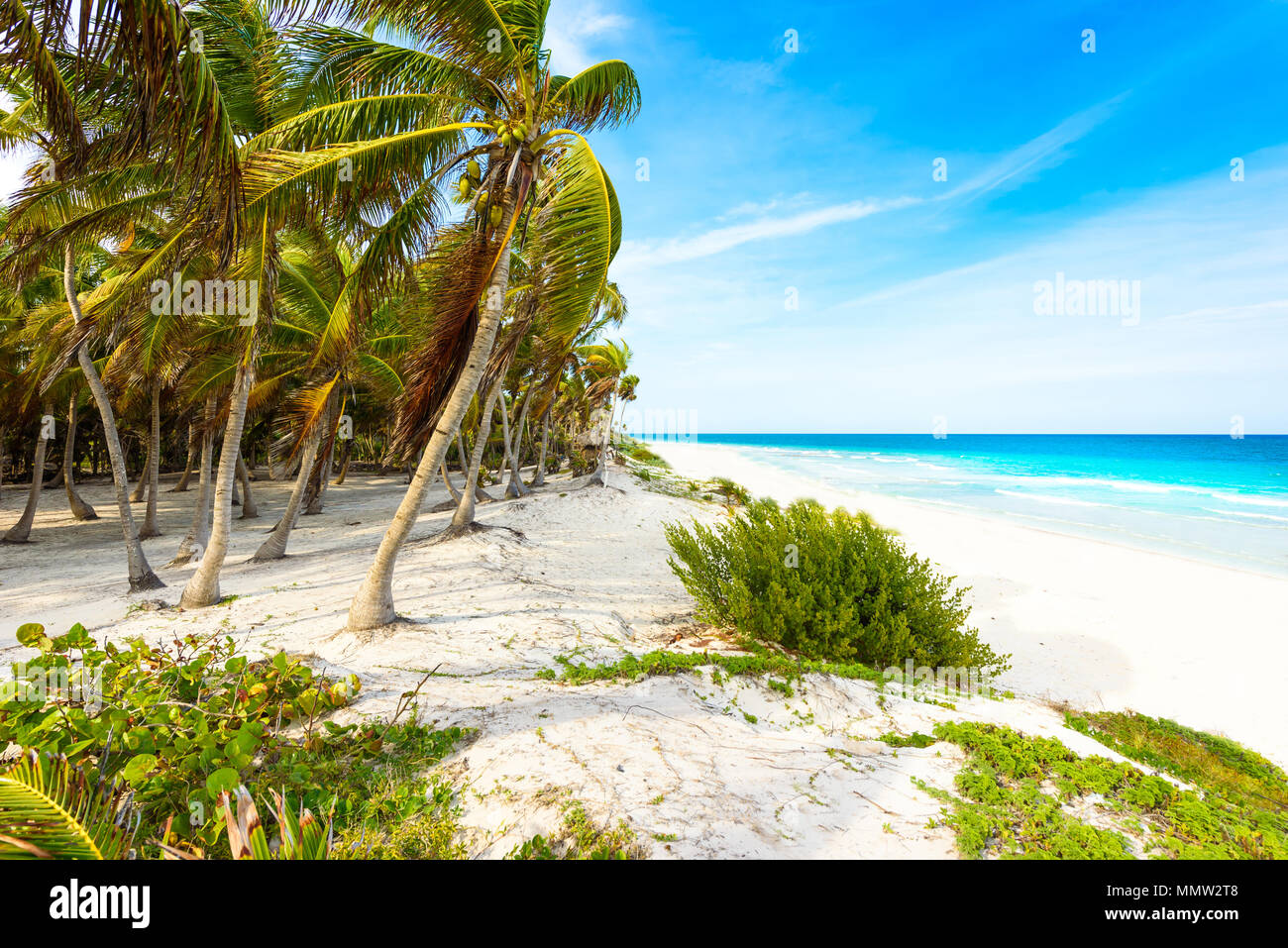 Explore The Beauty Of Caribbean: Playa Aruba Stock Photos & Playa Aruba Stock Images