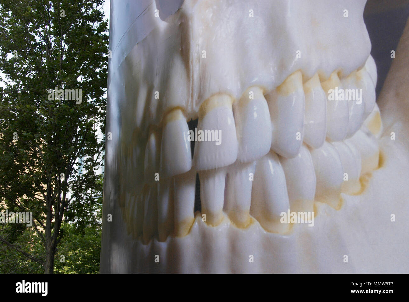 48-sheet poster site of skull with a big mouthful of teeth grinning at the side of a road in Melbourne Australia - Stock Image