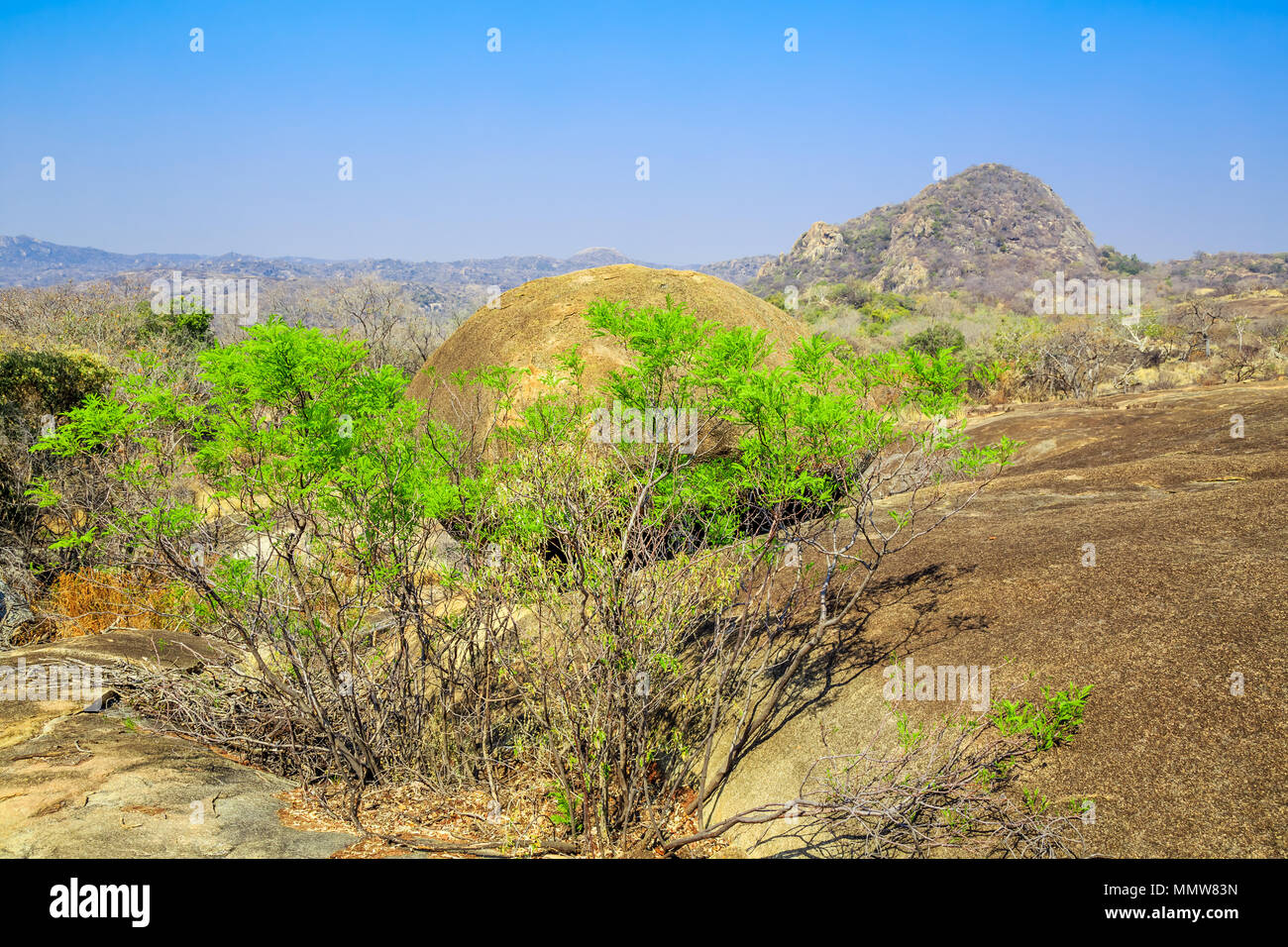 Landscape view of Matobo National Park, Zimbabwe, showing typical rock formations and foliage. - Stock Image