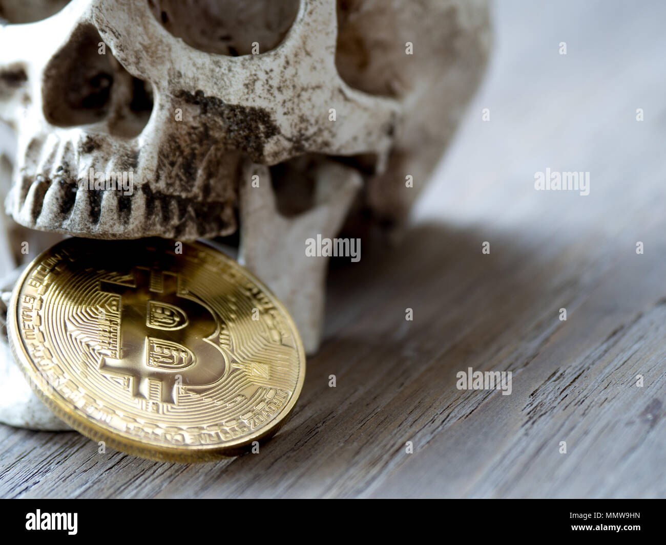 Close up of Skull biting Golden bitcoin on wooden table. The concept of investment and Fluctuation of bitcoin and cryptocurrency. The feeling of disap - Stock Image