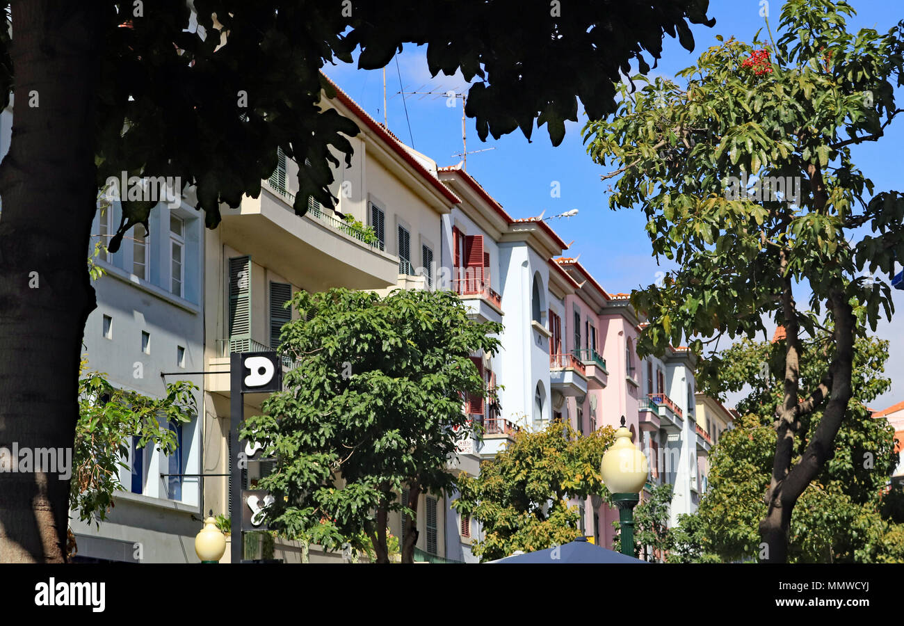 Pastel coloured apartments and balconies along the tree lined streets of Funchal on Madeira, the Canary Islands. - Stock Image