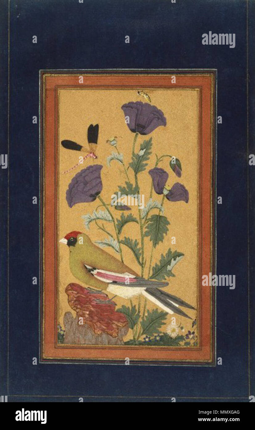 .  English: This painting depicts elements of nature, all of them inspired by real species but rendered in a fanciful palette of intense colors. The bird perches on a fabulous rock that comes straight out of Persian painting traditions. The use of jewel tones in the painting suggests that it was made in the southern Indian region known as the Deccan, possibly in the state of Golconda. Both the poppy and the dragonfly show up in many Deccani paintings as emblems of the seasons. Bird and flower subjects were not terribly popular in either India or Iran before the sixteenth century, when Mughal e Stock Photo