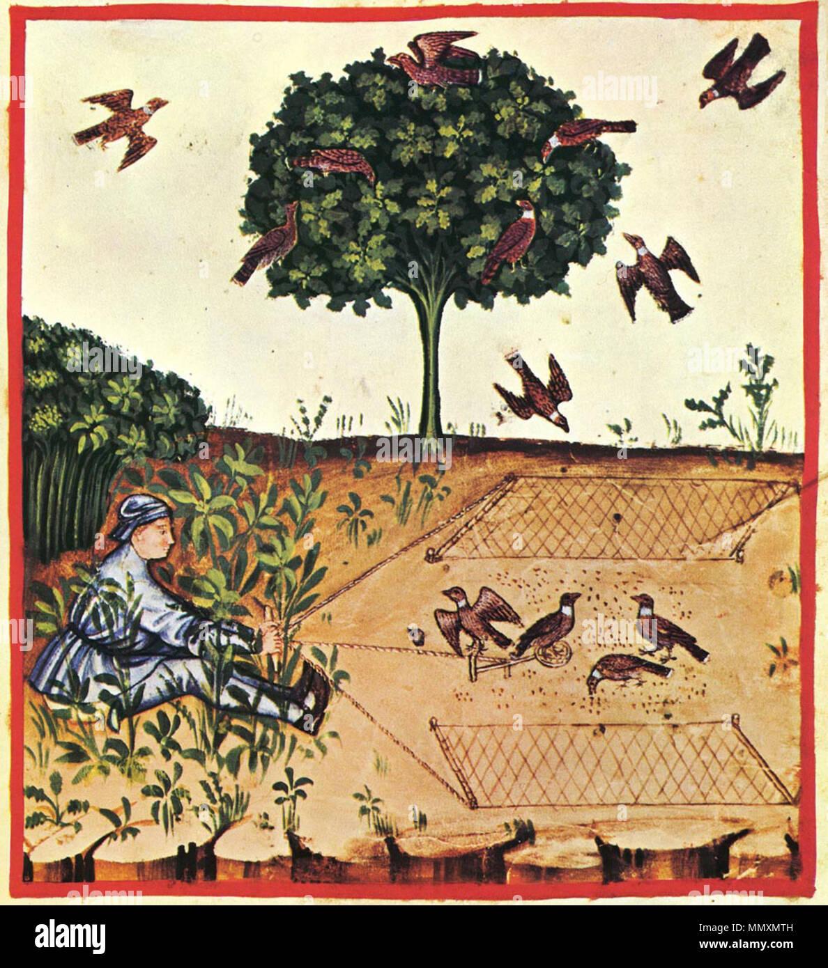 Tacuina sanitatis (XIV century) . 14th century. unknown master 34 ...