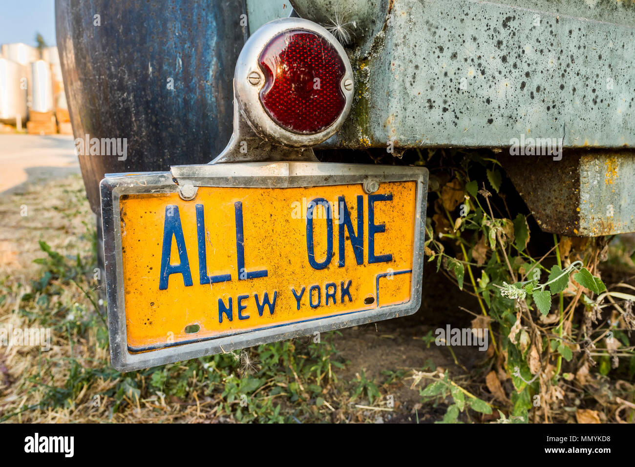 All One, New York car licence plate - Stock Image