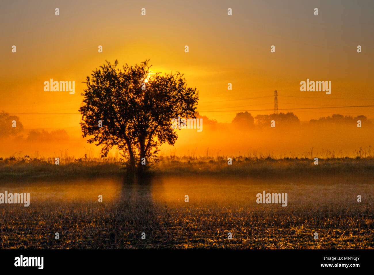 Rufford, Lancashire, UK. 14/05/2018. UK Weather.  Cold, atmospheric, misty morning after overnight frosts, at the start of the day in rural agricultural countryside. A ground frost after a clear night brings risk of damage to newly planted crops. Credit: MediaWorldImages/AlamyLiveNews. - Stock Image