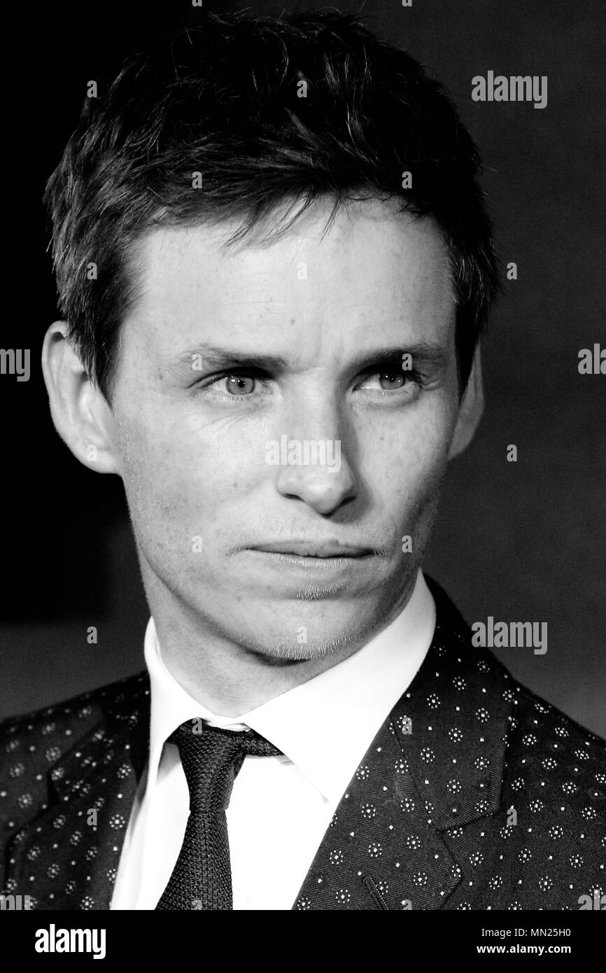 LONDON, ENGLAND - NOVEMBER 15: Editors Note: Image Converted to Black and White)  Eddie Redmayne attends the European premiere of 'Fantastic Beasts And Where To Find Them' at Odeon Leicester Square on November 15, 2016 in London, England. - Stock Image