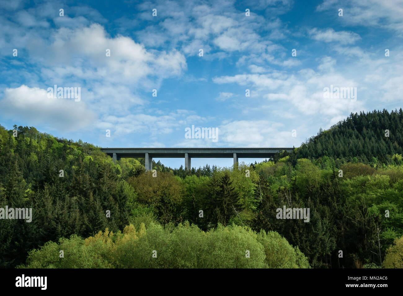 bridge over forest - Stock Image