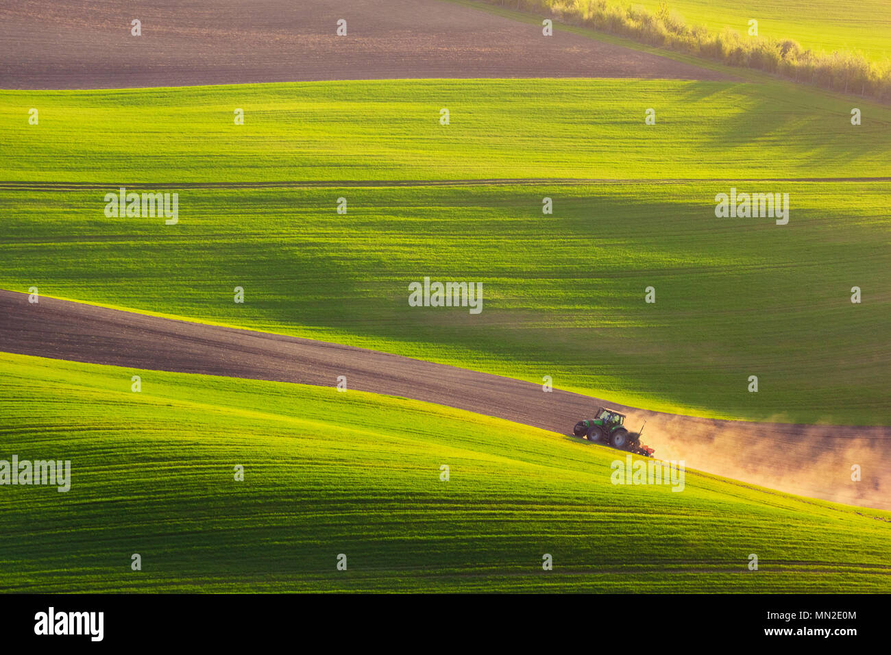 tractor plows the field in the spring - Stock Image