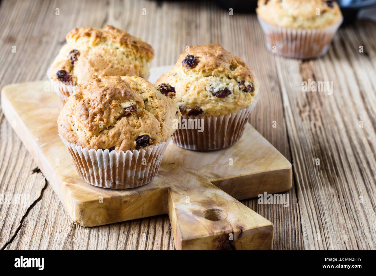 Breakfast cornmeal muffins with raisins, traditional american home baking Stock Photo