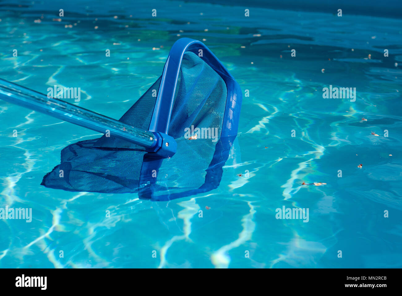 Swimming pool with blue ripple water during clean maintenance. Pool ...