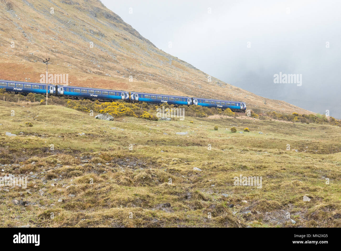 ScotRail train near Bridge of Orchy in the Scottish Highlands, UK - Stock Image