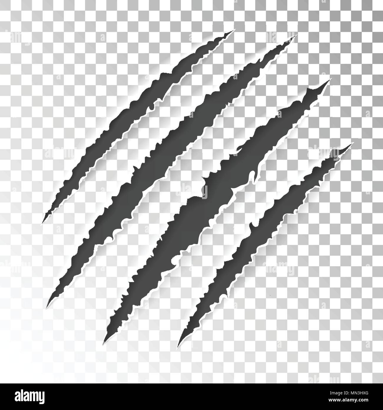 Scratch Claws of Animal - Stock Vector