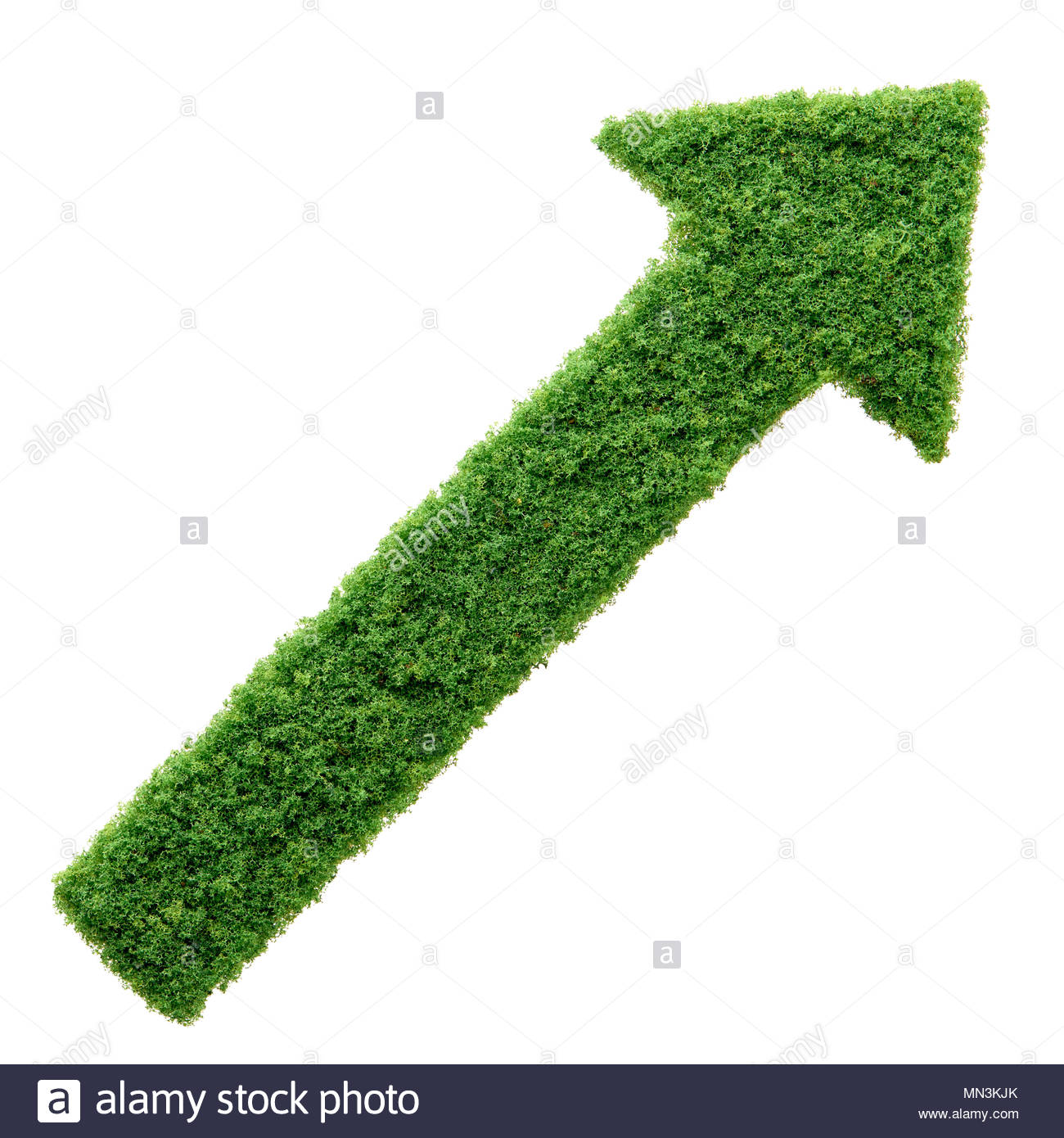 Grass growing in the shape of an arrow, symbolising the care and dedication needed for progress, success and profit in business. - Stock Image