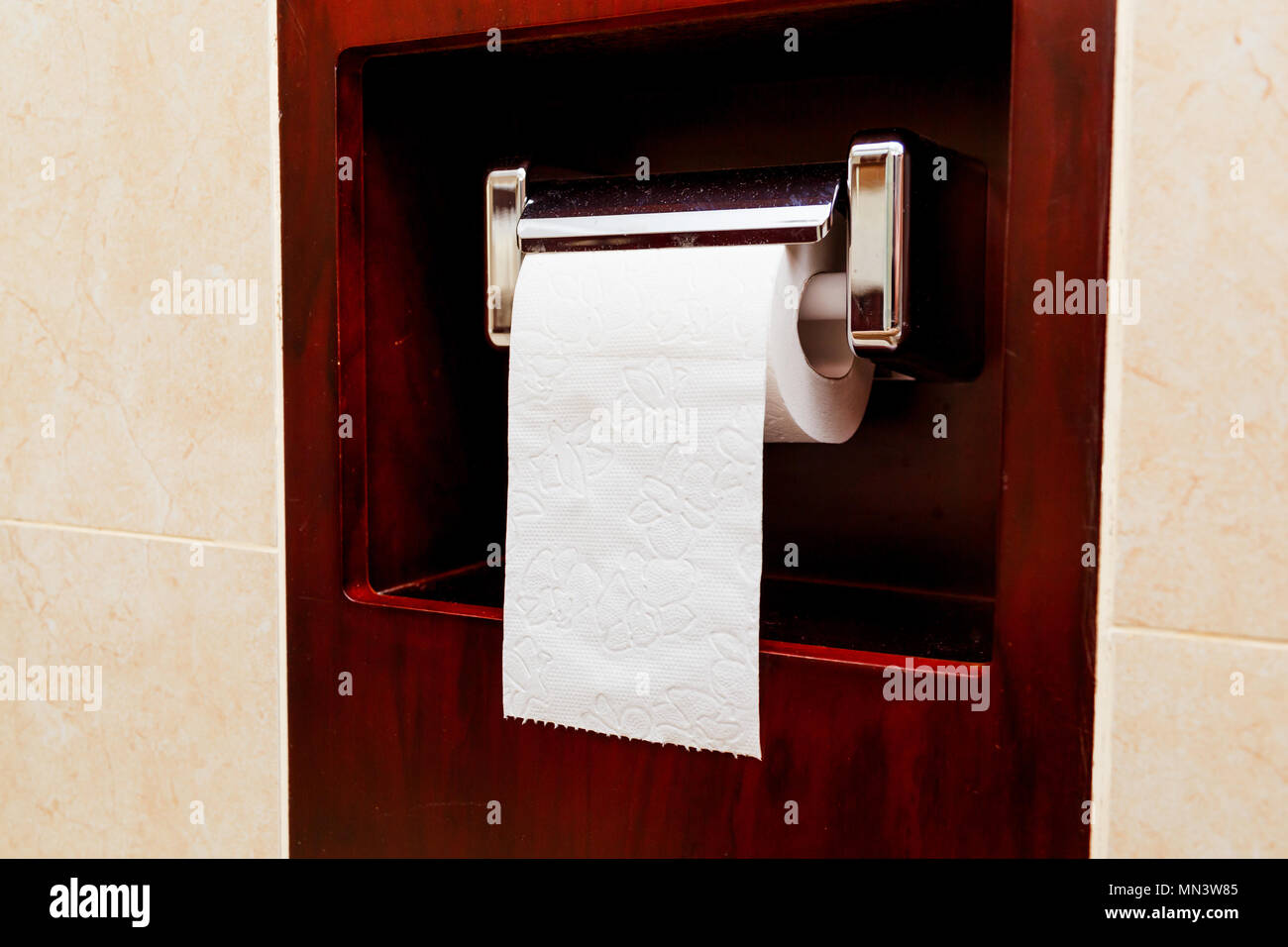 Roll of toilet paper on a brass fixture - Stock Image
