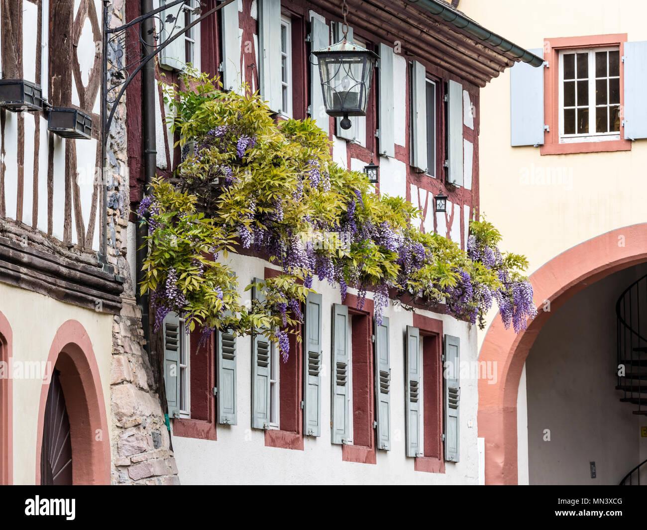 Village Burkheim near Freiburg, Breisgau, Baden-Würtemberg, Germany Stock Photo