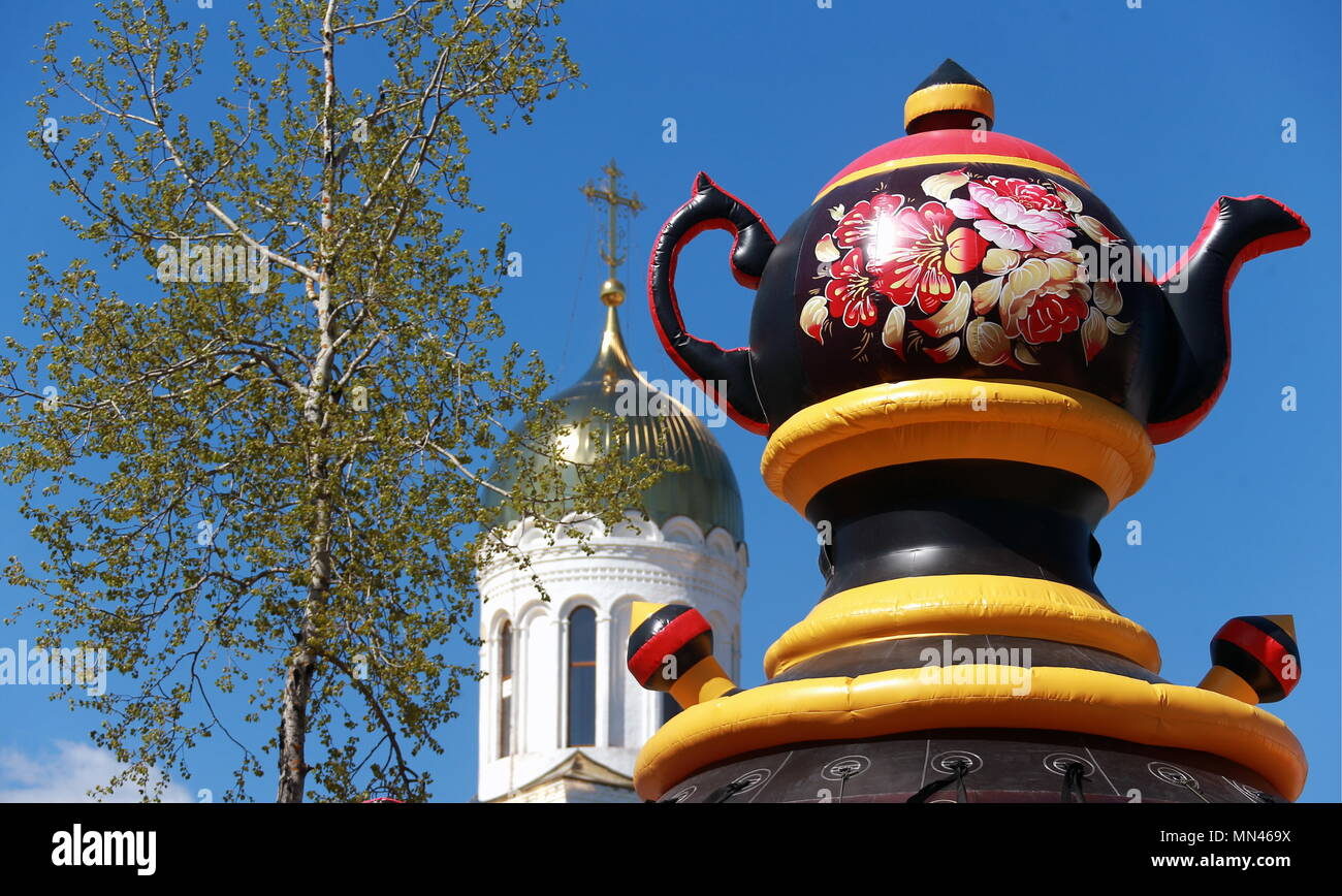 Healthy Russia: description and features