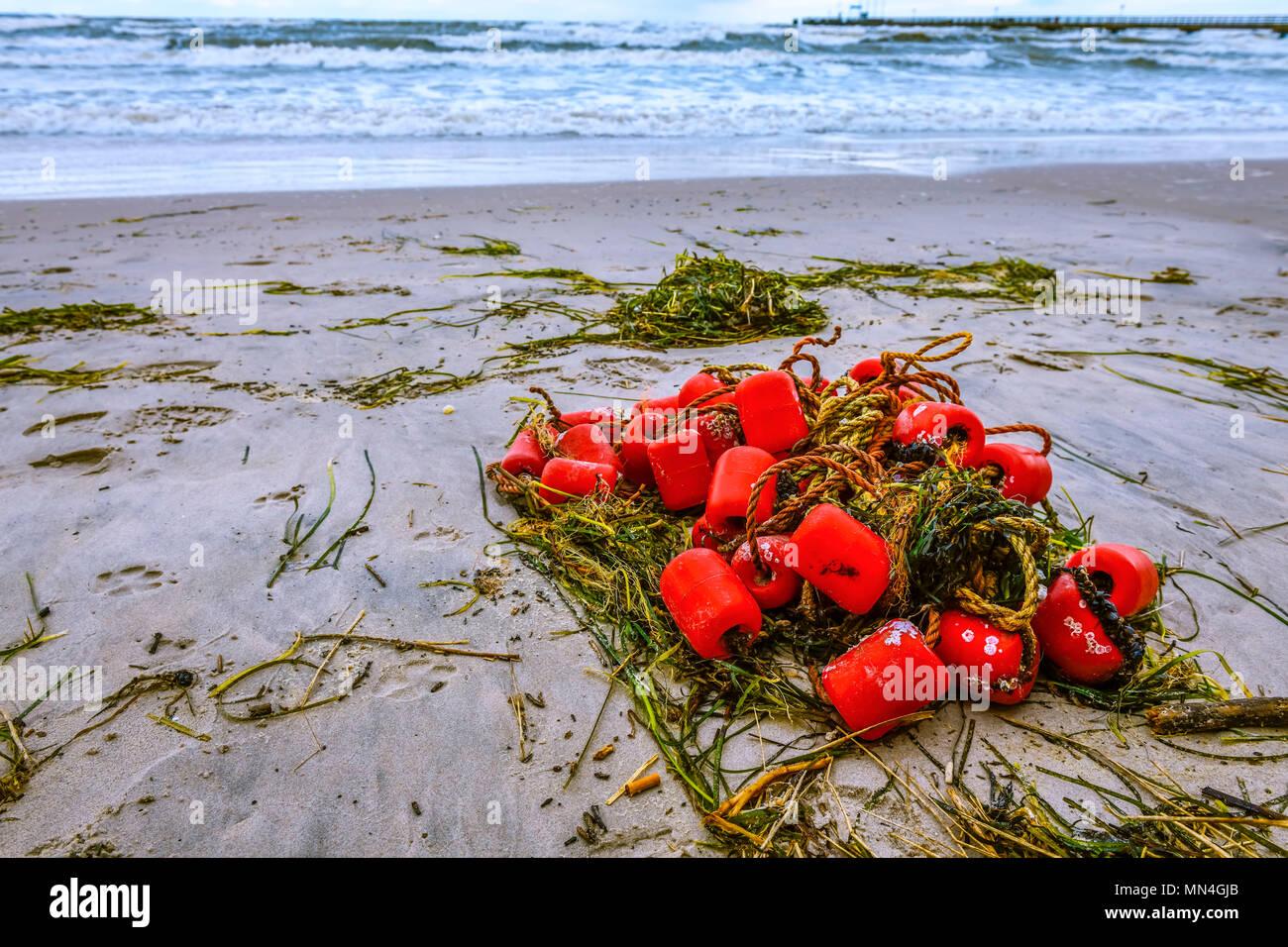 The remains of a fishing net is consoles after storm in Scharbeutz, Schleswig-Holstein, Germany, Europe, Angespülte Reste von einem Fischernetz nach S - Stock Image